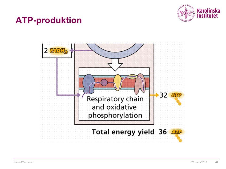 26 mars 2015Namn Efternamn47 ATP-produktion