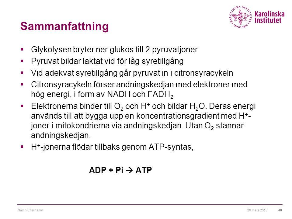 26 mars 2015Namn Efternamn48 Sammanfattning  Glykolysen bryter ner glukos till 2 pyruvatjoner  Pyruvat bildar laktat vid för låg syretillgång  Vid