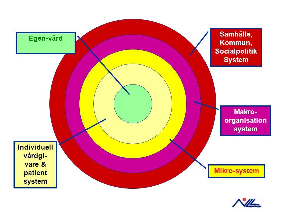 Samhälle, Kommun, Socialpolitik System Makro- organisation system Mikro-system Individuell vårdgi- vare & patient system Egen-vård