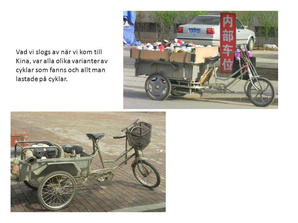 Vad vi slogs av när vi kom till Kina, var alla olika varianter av cyklar som fanns och allt man lastade på cyklar.