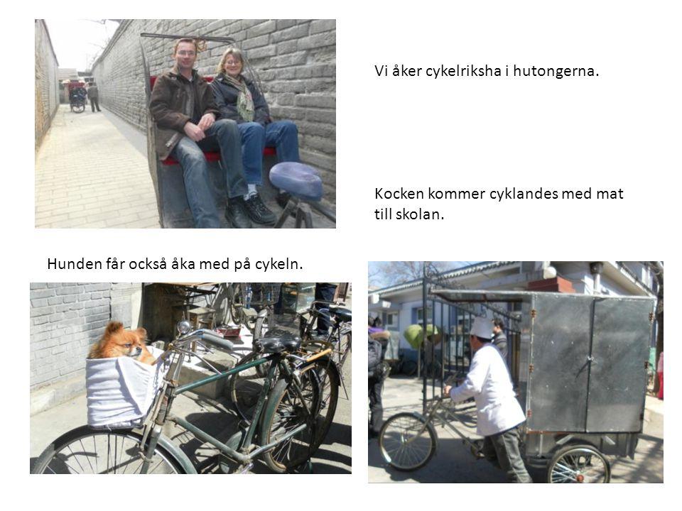 Vi åker cykelriksha i hutongerna. Kocken kommer cyklandes med mat till skolan. Hunden får också åka med på cykeln.
