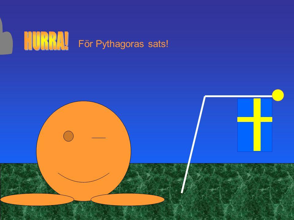 För Pythagoras sats!