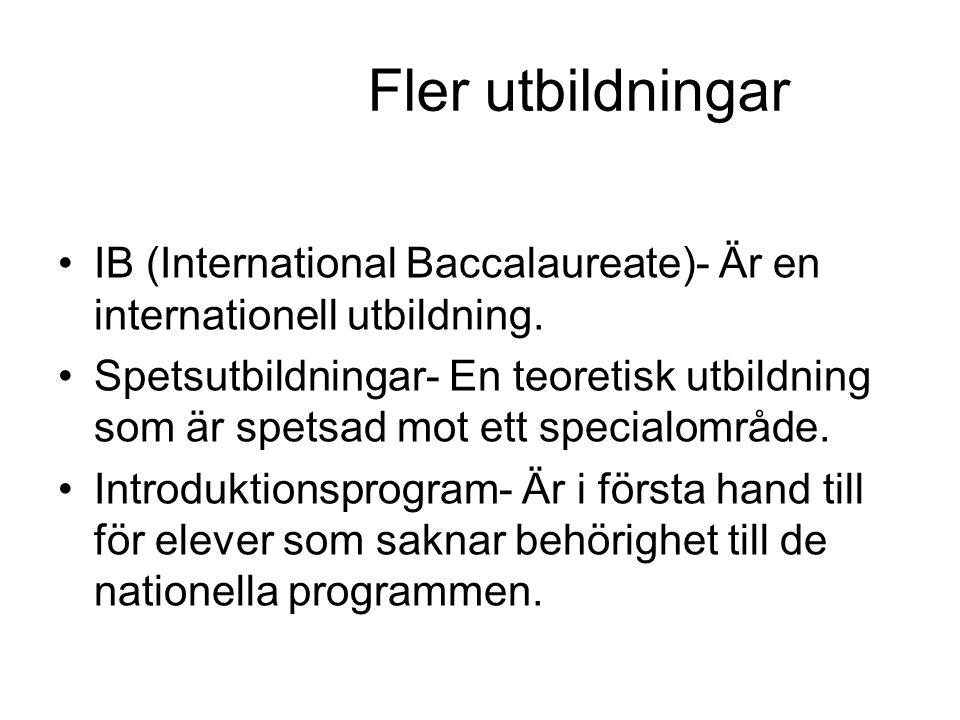 Fler utbildningar IB (International Baccalaureate)- Är en internationell utbildning. Spetsutbildningar- En teoretisk utbildning som är spetsad mot ett
