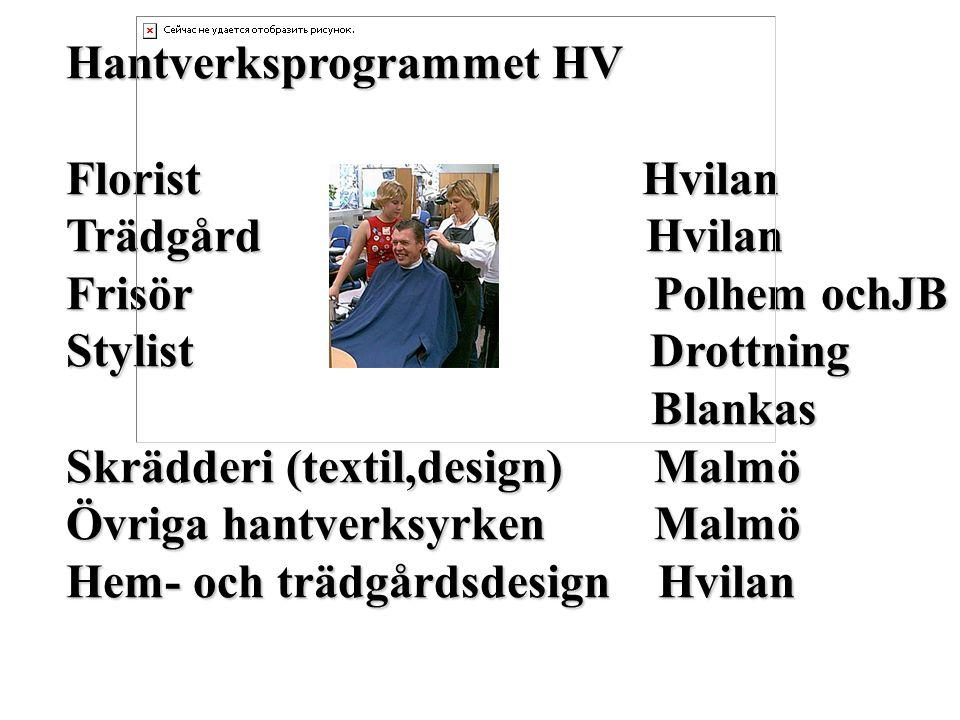 Hantverksprogrammet HV FloristHvilan Trädgård Hvilan Frisör Polhem ochJB Stylist Drottning Blankas Blankas Skrädderi (textil,design) Malmö Övriga hant