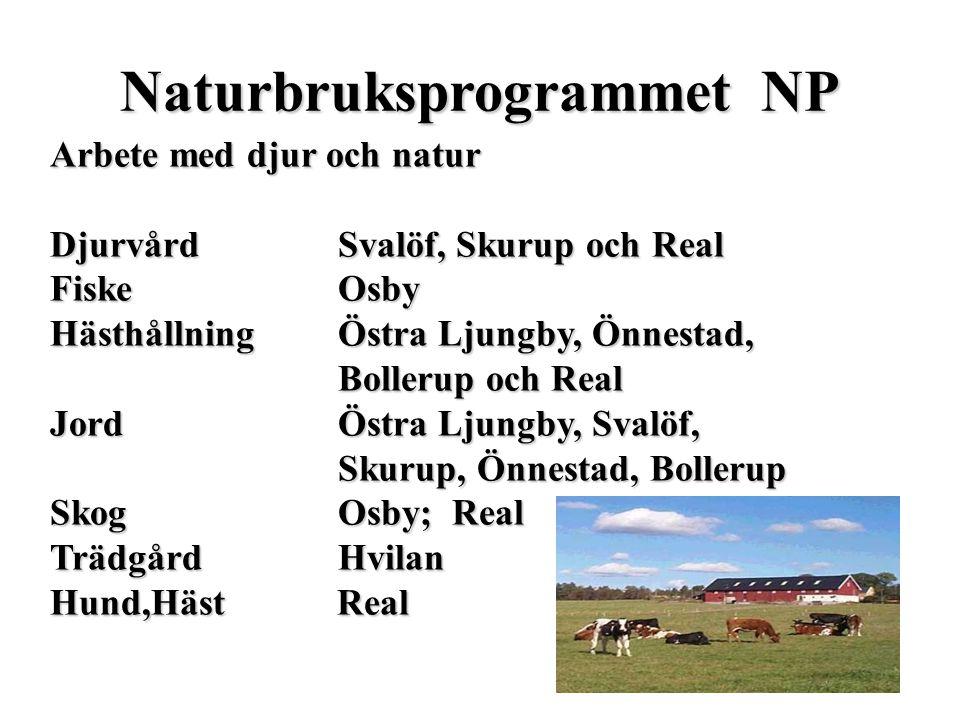 Naturbruksprogrammet NP Arbete med djur och natur DjurvårdSvalöf, Skurup och Real FiskeOsby HästhållningÖstra Ljungby, Önnestad, Bollerup och Real Jor