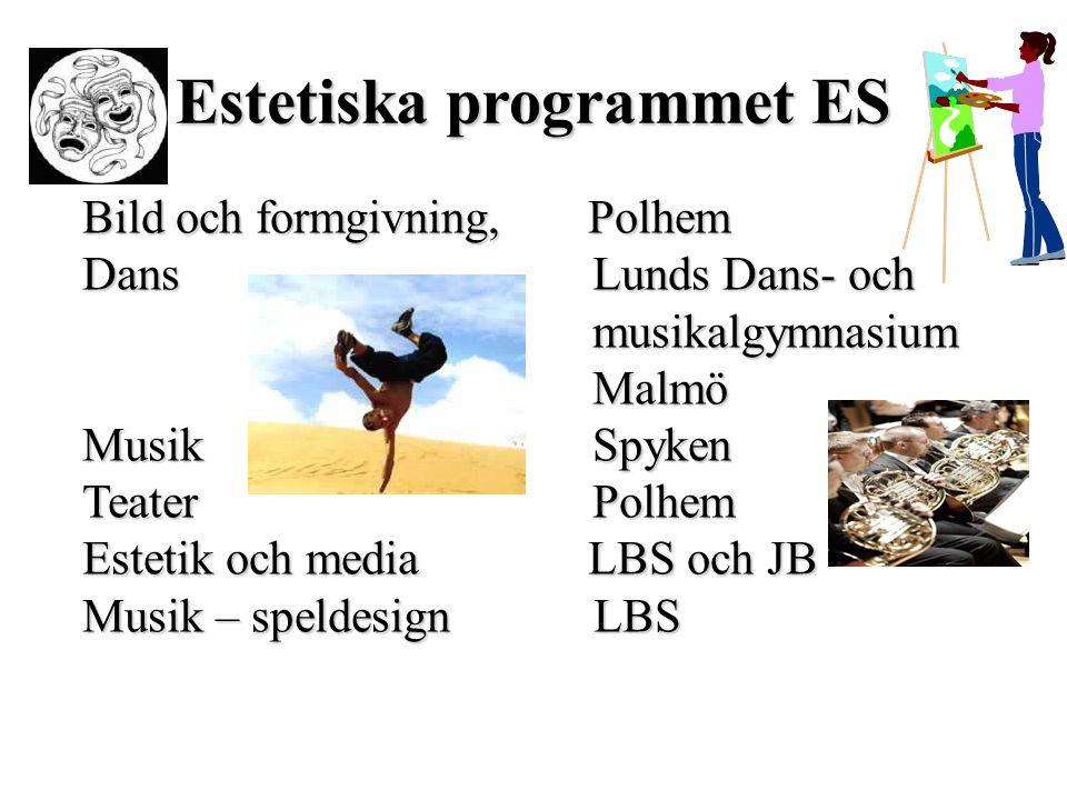 Estetiska programmet ES Bild och formgivning, Polhem Dans Lunds Dans- och musikalgymnasium musikalgymnasium Malmö Malmö Musik Spyken Teater Polhem Est
