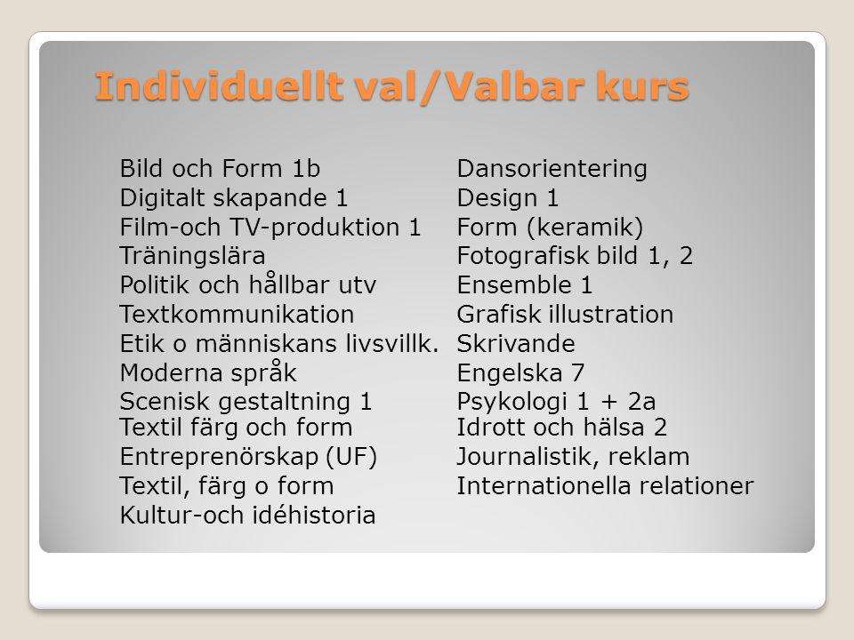 Bild och Form 1b Dansorientering Digitalt skapande 1Design 1 Film-och TV-produktion 1Form (keramik) TräningsläraFotografisk bild 1, 2 Politik och håll