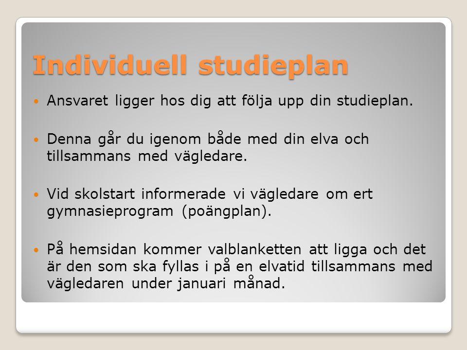 Individuell studieplan Ansvaret ligger hos dig att följa upp din studieplan. Denna går du igenom både med din elva och tillsammans med vägledare. Vid