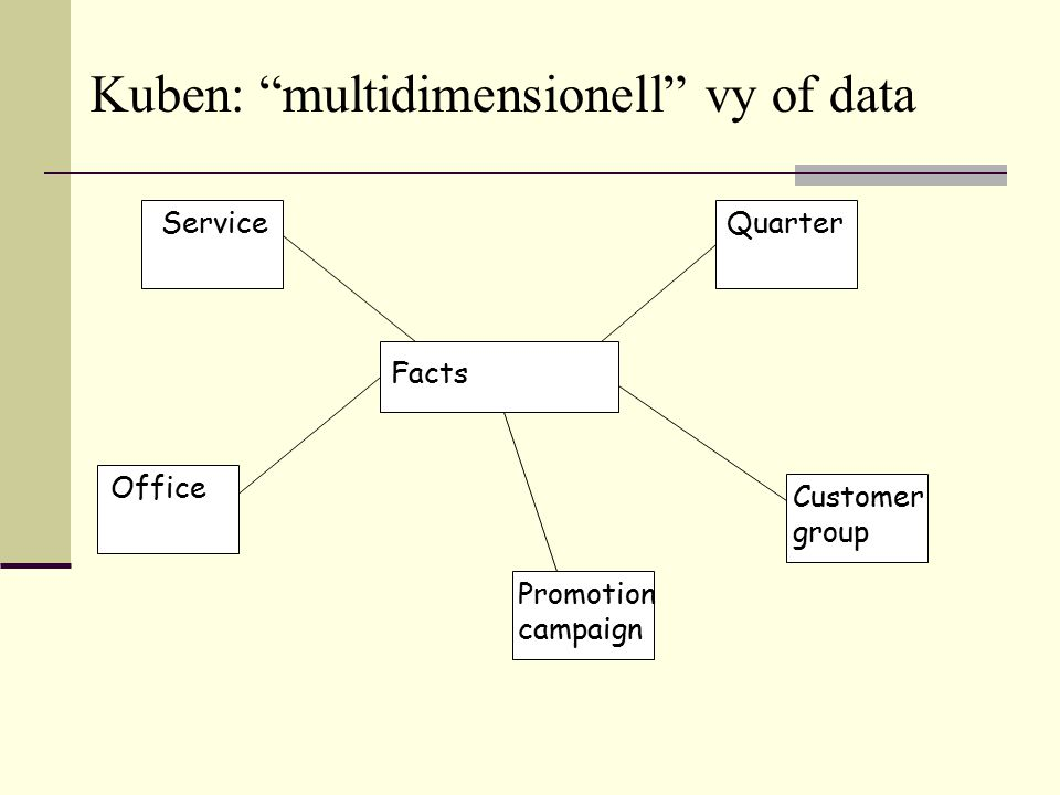 """Promotion campaign Service Customer group Facts Office Quarter Kuben: """"multidimensionell"""" vy of data"""