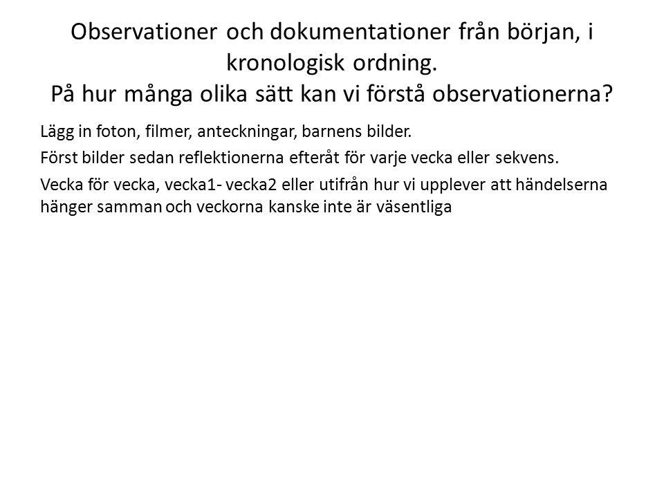 Observationer och dokumentationer från början, i kronologisk ordning. På hur många olika sätt kan vi förstå observationerna? Lägg in foton, filmer, an