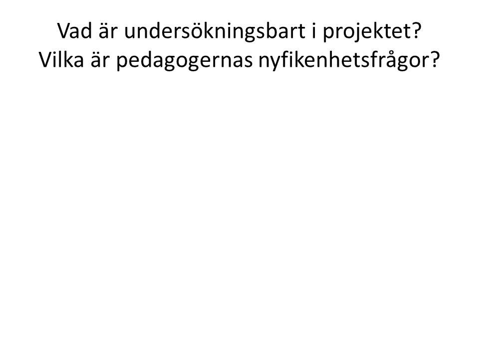 Vad är undersökningsbart i projektet? Vilka är pedagogernas nyfikenhetsfrågor?