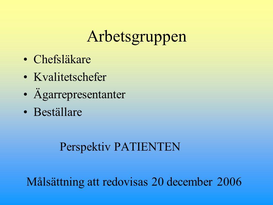 Arbetsgruppen Chefsläkare Kvalitetschefer Ägarrepresentanter Beställare Perspektiv PATIENTEN Målsättning att redovisas 20 december 2006