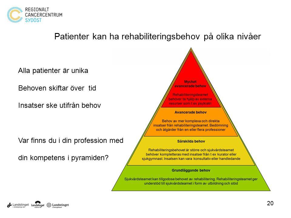 Patienter kan ha rehabiliteringsbehov på olika nivåer Alla patienter är unika Behoven skiftar över tid Insatser ske utifrån behov Var finns du i din p