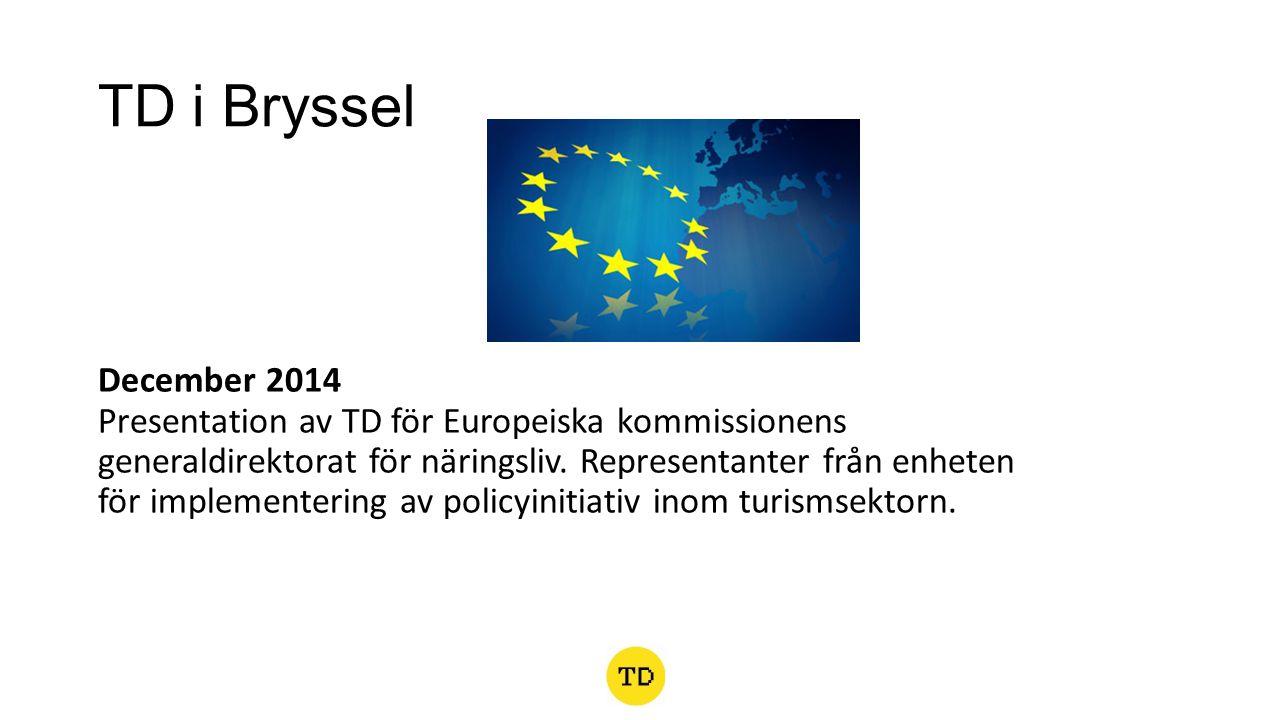 TD i Bryssel December 2014 Presentation av TD för Europeiska kommissionens generaldirektorat för näringsliv.