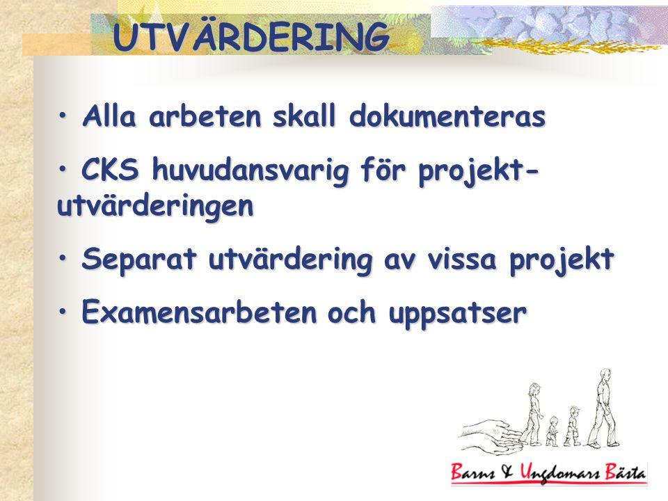 Alla arbeten skall dokumenteras Alla arbeten skall dokumenteras CKS huvudansvarig för projekt- utvärderingen CKS huvudansvarig för projekt- utvärderin