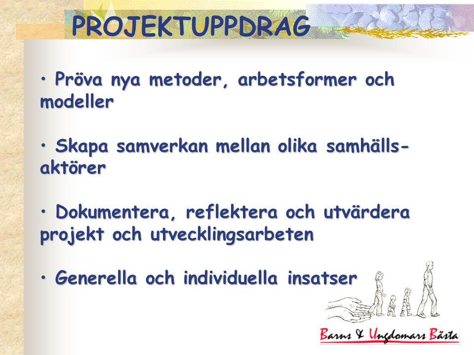 Pröva nya metoder, arbetsformer och modeller Pröva nya metoder, arbetsformer och modeller Skapa samverkan mellan olika samhälls- aktörer Skapa samverkan mellan olika samhälls- aktörer Dokumentera, reflektera och utvärdera projekt och utvecklingsarbeten Dokumentera, reflektera och utvärdera projekt och utvecklingsarbeten Generella och individuella insatser Generella och individuella insatser PROJEKTUPPDRAG