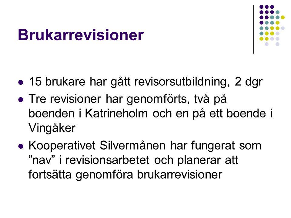 Brukarrevisioner 15 brukare har gått revisorsutbildning, 2 dgr Tre revisioner har genomförts, två på boenden i Katrineholm och en på ett boende i Ving