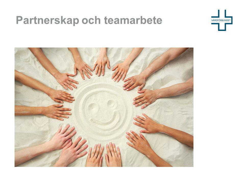Partnerskap och teamarbete