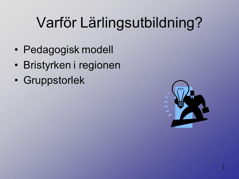 2 Varför Lärlingsutbildning? Pedagogisk modell Bristyrken i regionen Gruppstorlek