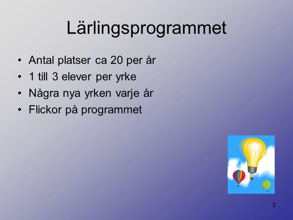 3 Lärlingsprogrammet Antal platser ca 20 per år 1 till 3 elever per yrke Några nya yrken varje år Flickor på programmet