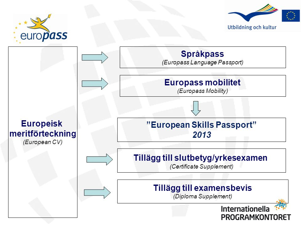 Tillägg till examensbevis (Diploma Supplement) Tillägg till slutbetyg/yrkesexamen (Certificate Supplement) Språkpass (Europass Language Passport) Europeisk meritförteckning (European CV) Europass mobilitet (Europass Mobility) European Skills Passport 2013