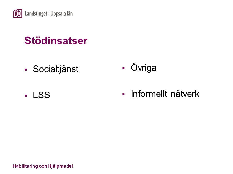 Stödinsatser  Socialtjänst  LSS  Övriga  Informellt nätverk