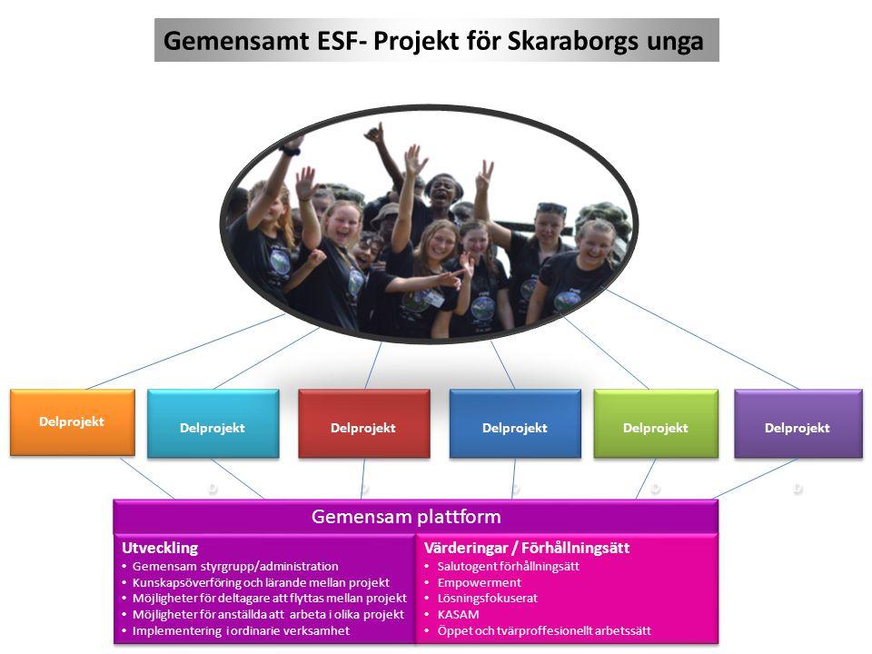 Gemensam plattform Utveckling Gemensam styrgrupp/administration Kunskapsöverföring och lärande mellan projekt Möjligheter för deltagare att flyttas me