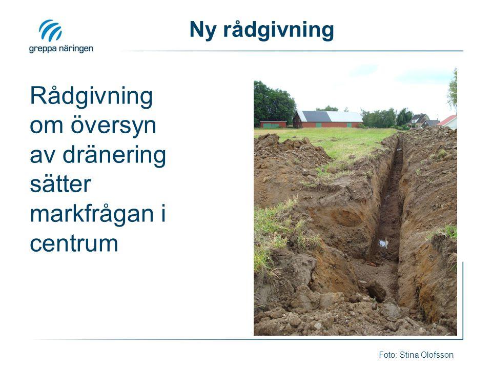 Ny rådgivning Rådgivning om översyn av dränering sätter markfrågan i centrum Foto: Stina Olofsson