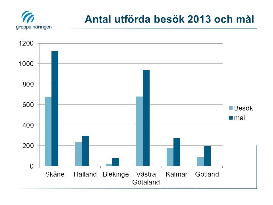 Antal utförda besök 2013 och mål