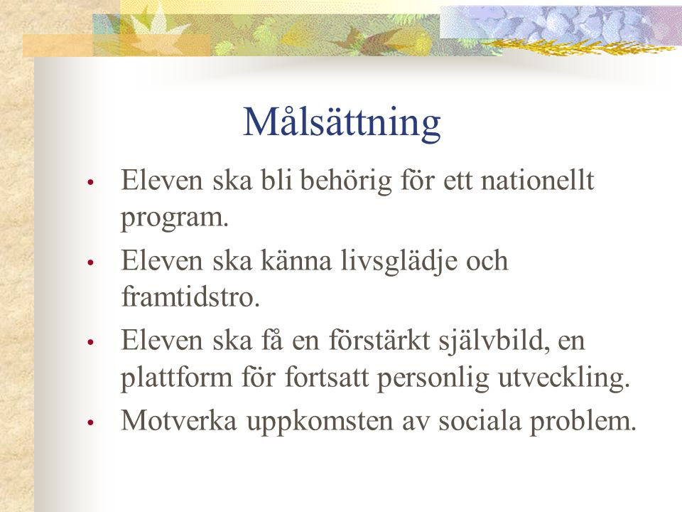 Målsättning Eleven ska bli behörig för ett nationellt program.