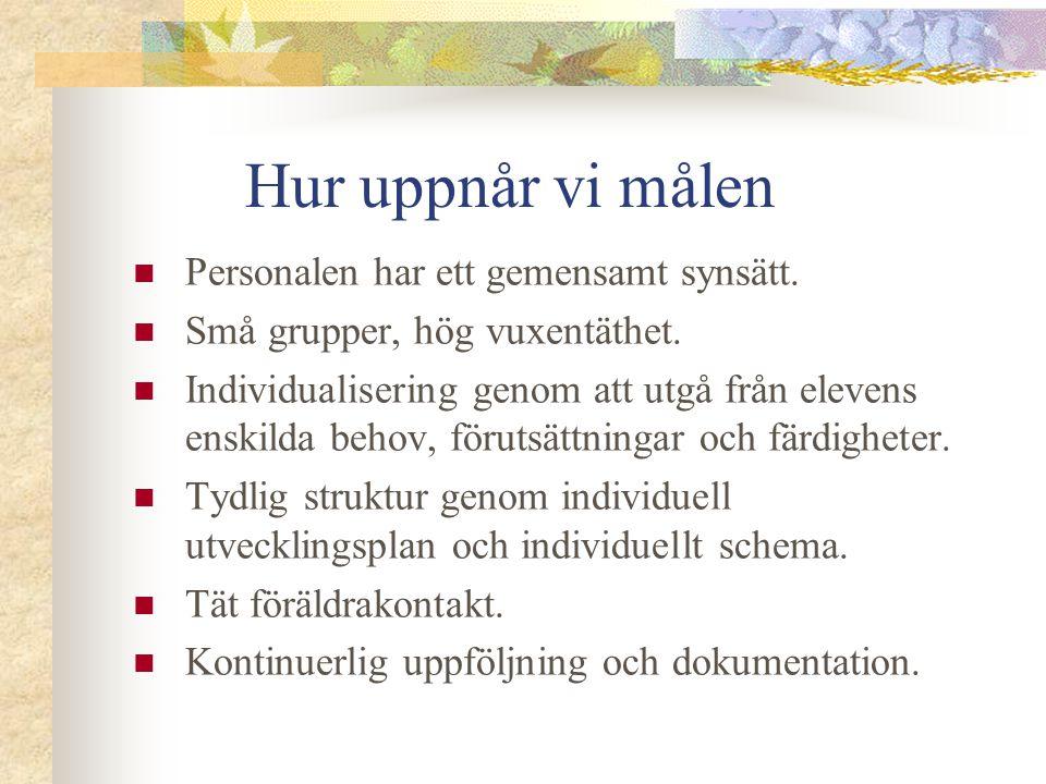 Hur uppnår vi målen Genom anpassad studiegång för att eleven ska ha möjlighet att i första hand koncentrera sig på skolämnena svenska, matematik och engelska.