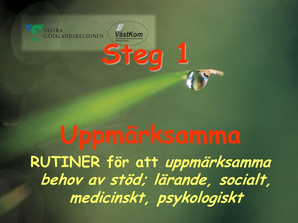 Steg 1 Uppmärksamma RUTINER för att uppmärksamma behov av stöd; lärande, socialt, medicinskt, psykologiskt