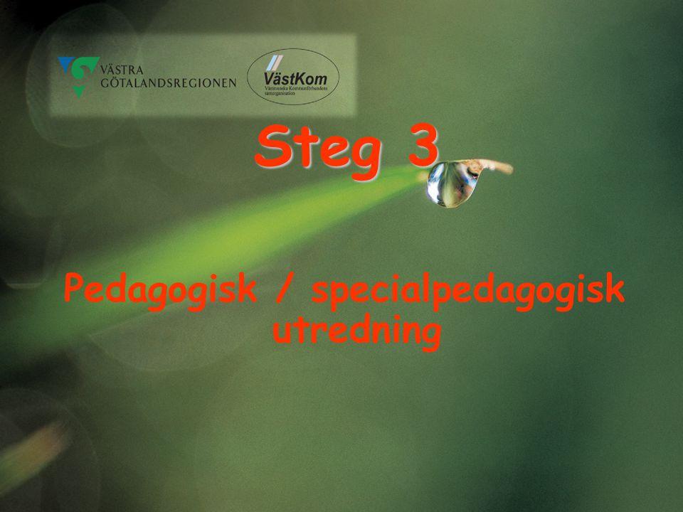 Steg 3 Pedagogisk / specialpedagogisk utredning