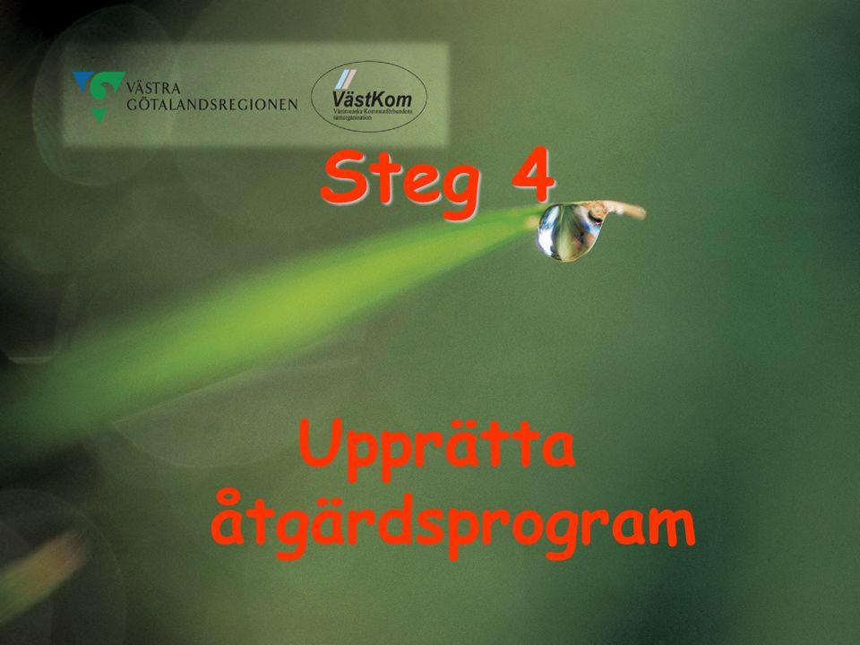 Steg 4 Upprätta åtgärdsprogram