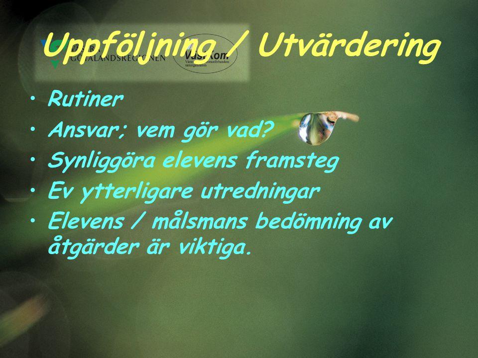 Uppföljning / Utvärdering Rutiner Ansvar; vem gör vad.