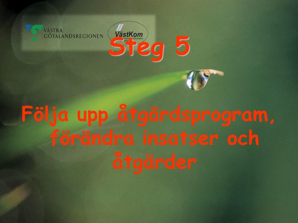 Steg 5 Följa upp åtgärdsprogram, förändra insatser och åtgärder