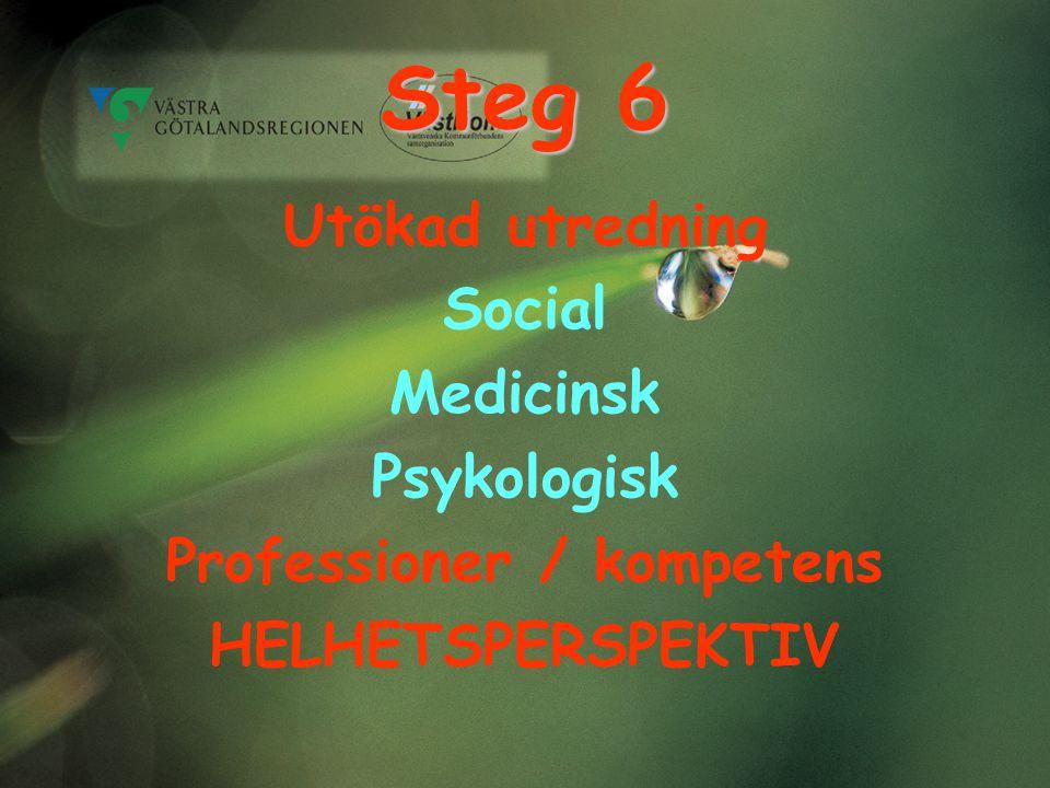 Steg 6 Utökad utredning Social Medicinsk Psykologisk Professioner / kompetens HELHETSPERSPEKTIV
