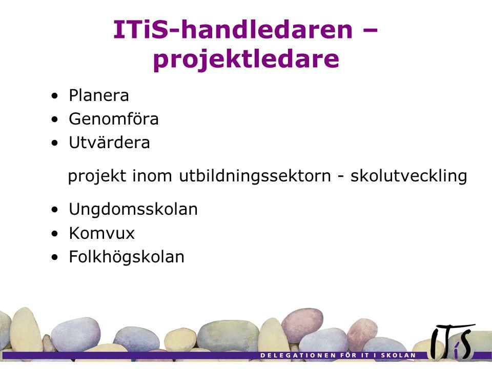 ITiS-handledaren – projektledare Planera Genomföra Utvärdera projekt inom utbildningssektorn - skolutveckling Ungdomsskolan Komvux Folkhögskolan