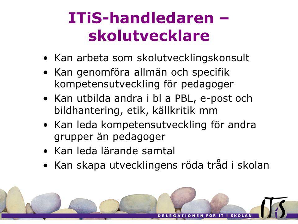 ITiS-handledaren – skolutvecklare Kan arbeta som skolutvecklingskonsult Kan genomföra allmän och specifik kompetensutveckling för pedagoger Kan utbild