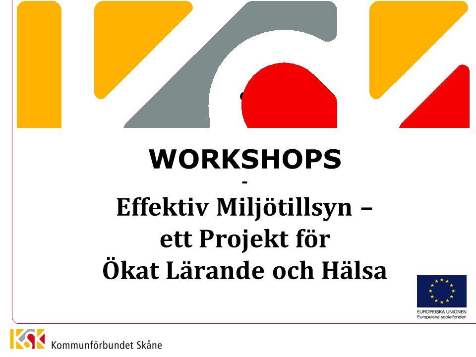 WORKSHOPS - Effektiv Miljötillsyn – ett Projekt för Ökat Lärande och Hälsa