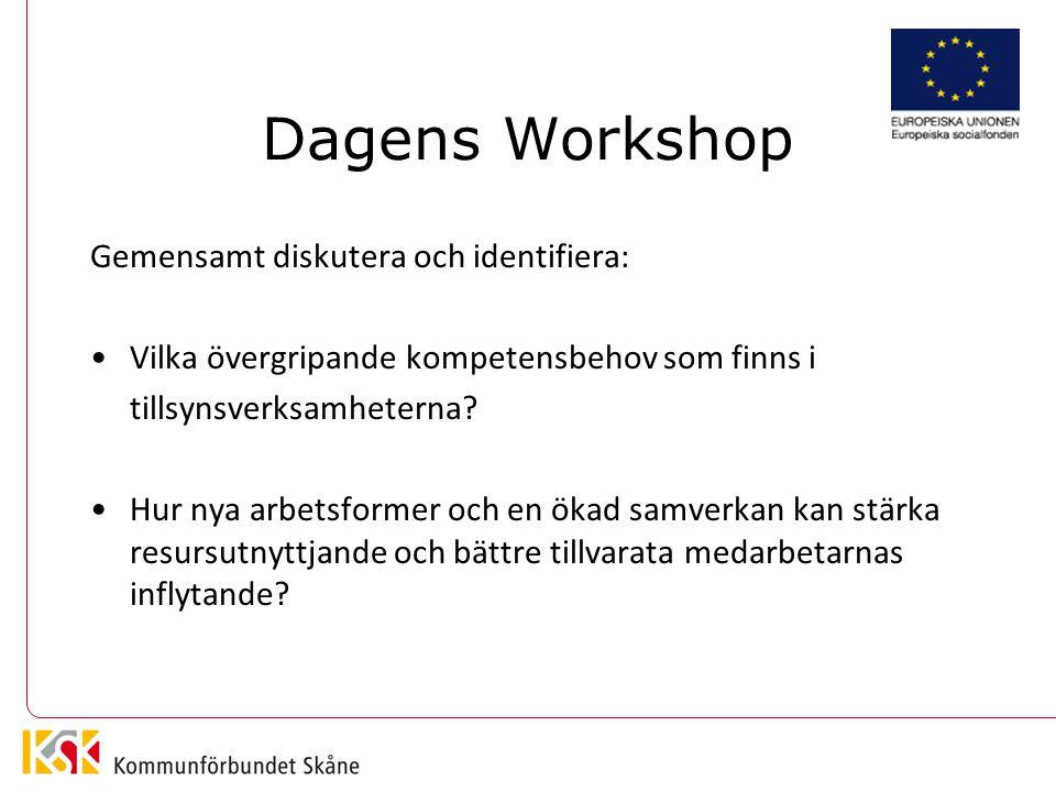 Dagens Workshop Gemensamt diskutera och identifiera: Vilka övergripande kompetensbehov som finns i tillsynsverksamheterna.