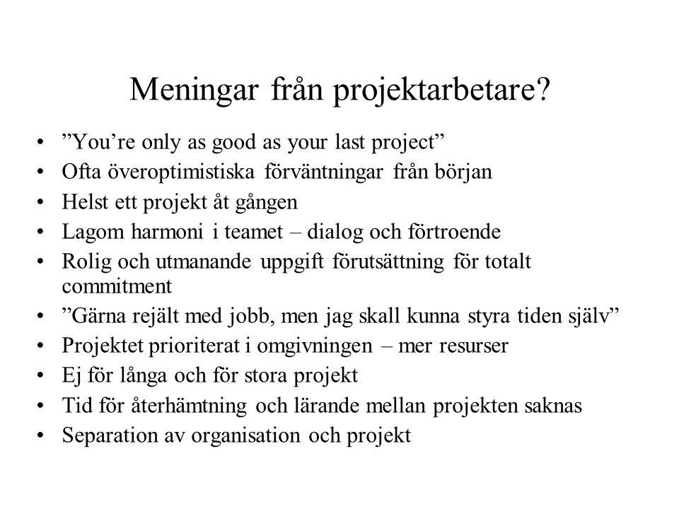 Meningar från projektarbetare.