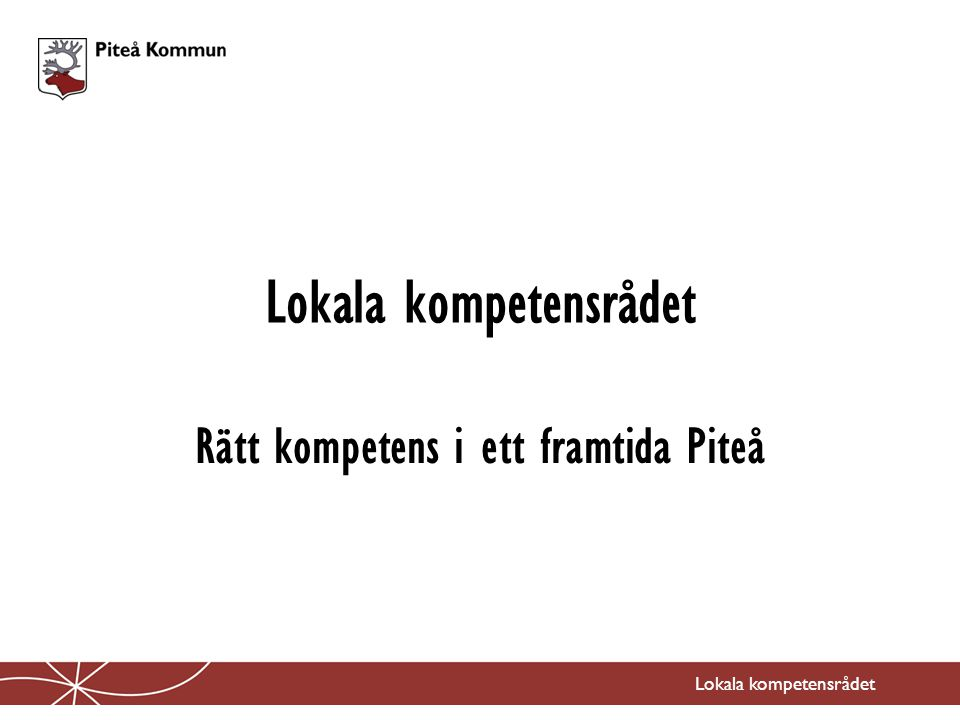 Lokala kompetensrådet Rätt kompetens i ett framtida Piteå Lokala kompetensrådet