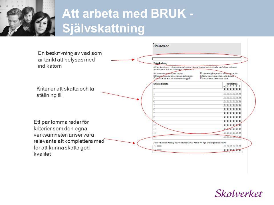 Att arbeta med BRUK - Självskattning En beskrivning av vad som är tänkt att belysas med indikatorn Kriterier att skatta och ta ställning till Ett par