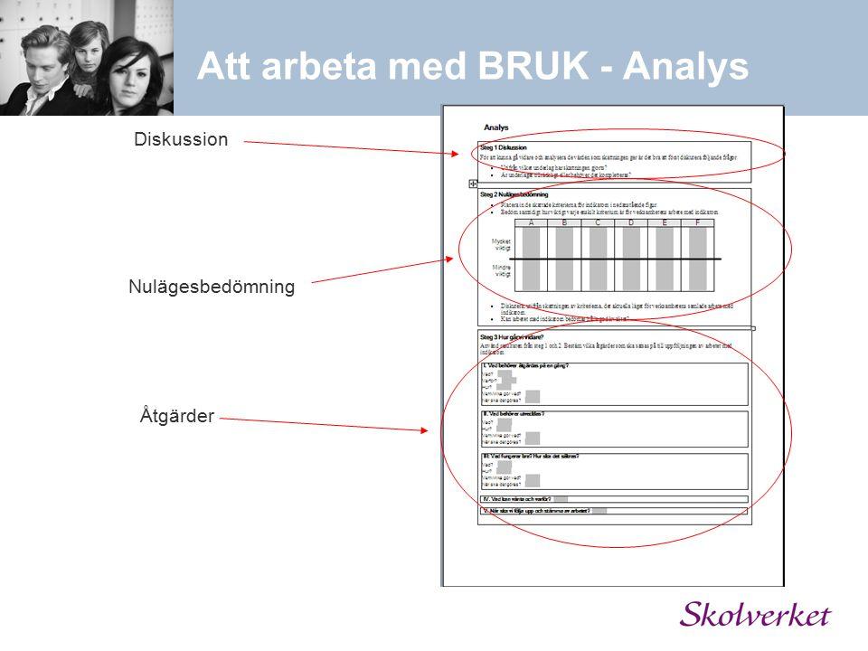 Att arbeta med BRUK - Analys Diskussion Nulägesbedömning Åtgärder