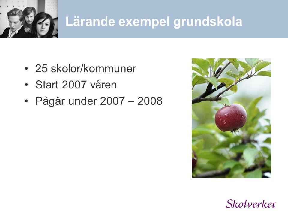 Lärande exempel grundskola 25 skolor/kommuner Start 2007 våren Pågår under 2007 – 2008