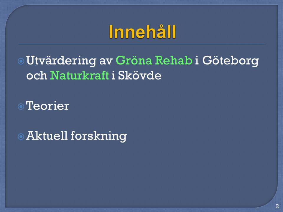  Utvärdering av Gröna Rehab i Göteborg och Naturkraft i Skövde  Teorier  Aktuell forskning 2