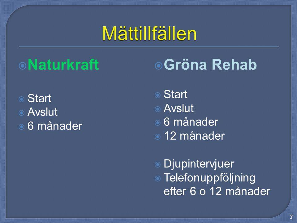  Naturkraft  Start  Avslut  6 månader  Gröna Rehab  Start  Avslut  6 månader  12 månader  Djupintervjuer  Telefonuppföljning efter 6 o 12 månader 7