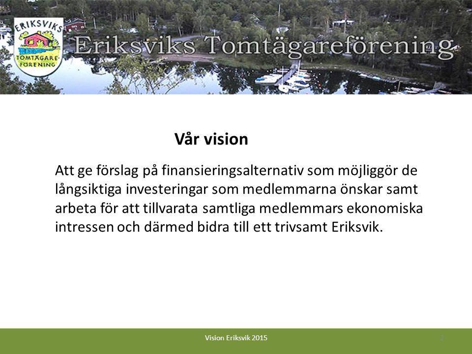 Att ge förslag på finansieringsalternativ som möjliggör de långsiktiga investeringar som medlemmarna önskar samt arbeta för att tillvarata samtliga medlemmars ekonomiska intressen och därmed bidra till ett trivsamt Eriksvik.