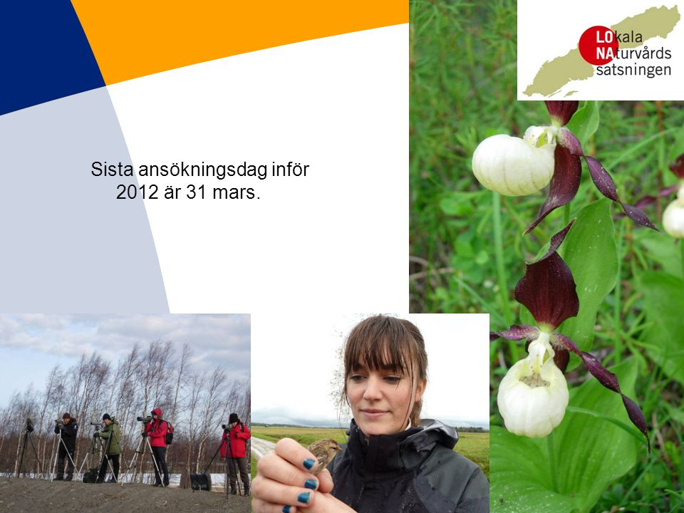 Sista ansökningsdag inför 2012 är 31 mars.